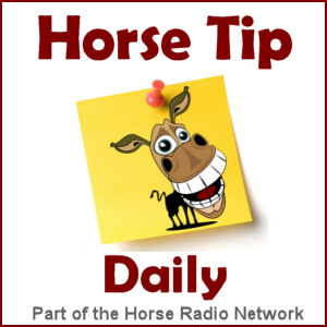 All Daily Tips – Horse Tip Daily