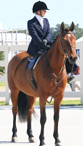 michellesidesalledressage