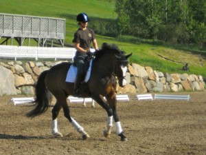 Gina Smith dressage by  franklands farm