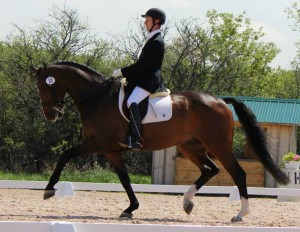 Philip Parkes dressage source parkesequestrian