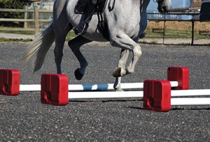 Cavaletti trot poles source dressagearenanet